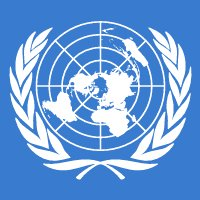 Real IRM client United Nations